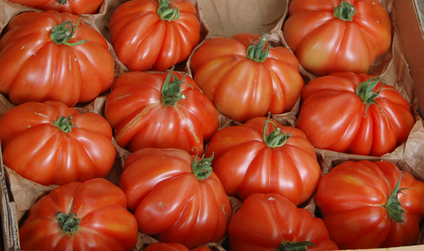 different types of tomatoes for home growing, Natural flower